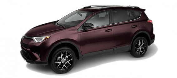 rav4-color-2