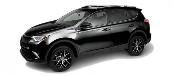 rav4-color-3