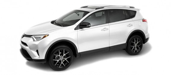 rav4-color-7