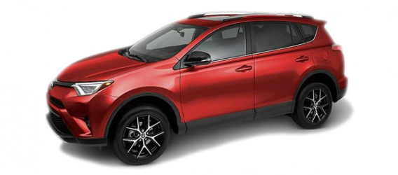 rav4-color-8